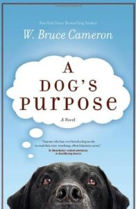 a dog's purpose movie,a dog's purpose cast,a dog's purpose imdb,a dog's purpose full movie online,a dog's purpose review,a dog's purpose pdf,a dog's purpose showtimes,a dog's purpose quotes,a dog's purpose book review,a dog's purpose movie review,a dog's purpose abuse,a dog's purpose book,a dog's purpose abuse video,a dog's purpose animal abuse,a dog's purpose author,a dog's purpose amazon,a dog's purpose audiobook,a dog's purpose actors,a dog's purpose a novel for humans,a dog's purpose amc,a dog's purpose audible,a dog's purpose,a dog's purpose novel,a dog's purpose box office,a dog's purpose book series,a dog's purpose bailey,a dog's purpose book target,a dog's purpose book amazon,a dog's purpose book walmart,a dog's purpose book online free,a dog's purpose book cover,a dog's purpose controversy,a dog's purpose commercial,a dog's purpose corgi,a dog's purpose characters,a dog's purpose common sense media,a dog's purpose commercial song,a dog's purpose chapter 1,a dog's purpose chapter summary,a dog's purpose cast ethan,a dog's purpose dog,a dog's purpose dvd,a dog's purpose dog names,a dog's purpose date,a dog's purpose dog cast,a dog's purpose discussion questions,a dog's purpose dennis quaid,a dog's purpose dog breeds,a dog's purpose director,a dog's purpose dog voice,a dog's purpose ethan,a dog's purpose ebook,a dog's purpose epub,a dog's purpose ending,a dog's purpose ellie,a dog's purpose ebook download,a dog's purpose español,a dog's purpose extended trailer,a dog's purpose ellie's story,a dog's purpose epub free download,a dog's purpose full movie free,a dog's purpose film,a dog's purpose full trailer,a dog's purpose full cast,a dog's purpose fandango,a dog's purpose full book,a dog's purpose facebook,a dog's purpose free pdf,a dog's purpose film review,a dog's purpose german shepherd,a dog's purpose genre,a dog's purpose google drive,a dog's purpose google drive mp4,a dog's purpose giveaway,a dog's purpose google books,a dog's purpose gsc,a dog's purpose golden village,a dog's purpose german,a dog's purpose guided reading level,a dog's purpose hardcover,a dog's purpose hannah,a dog's purpose harrison ford,a dog's purpose hardcover book,a dog's purpose harkins,a dog's purpose half price books,a dog's purpose how many pages,a dog's purpose hulu trailer,a dog's purpose hk,a dog's purpose hong kong,a dog's purpose images,a dog's purpose in life,a dog's purpose in spanish,a dog's purpose instagram,a dog's purpose in theaters,a dog's purpose itunes,a dog's purpose interview,a dog's purpose is it sad,a dog's purpose isbn,a dog's purpose josh gad,a dog's purpose january 27,a dog's purpose january 27th,a dog's purpose and a dog's journey,a dog's purpose kindle,a dog's purpose kj apa,a dog's purpose kickass,a dog's purpose knjiga,a dog's purpose kobo,a dog's purpose kinostart,a dog's purpose kinopoisk,a dog's purpose kinokuniya,a dog's purpose amazon kindle,purpose of a dog kennel,a dog's purpose lexile,a dog's purpose large print,a dog's purpose length,a dog's purpose lesson plans,a dog's purpose little ethan,a dog's purpose long trailer,a dog's purpose location,a dog's purpose little boy,a dog's purpose libro,a dog's purpose libro español,a dog's purpose movie times,a dog's purpose movie rating,a dog's purpose movie online,a dog's purpose movie poster,a dog's purpose music,a dog's purpose movie cast,a dog's purpose movie premiere,a dog's purpose movie dog breeds,a dog's purpose narrator,a dog's purpose netflix,a dog's purpose new trailer,a dog's purpose near me,a dog's purpose names,a dog's purpose number of pages,a dog's purpose norbert,a dog's purpose notes,a dog's purpose online free,a dog's purpose online book,a dog's purpose official trailer,a dog's purpose opening,a dog's purpose online book free,a dog's purpose opening day,a dog's purpose on dvd,a dog's purpose on amazon,a dog's purpose overview,a dog's purpose omaha,a dog's purpose preview,a dog's purpose plot,a dog's purpose poster,a dog's purpose premiere,a dog's purpose putlockers,a dog's purpose pages,a dog's purpose poem,a dog's purpose picture,a dog's purpose playing,a dog's purpose quiz,a dog's purpose questions,a dog's purpose quotes with page numbers,a dog's purpose questions and answers,a dog's purpose qartulad,a dog's purpose qbd,a dog's purpose study questions,a dog's purpose book discussion questions,a dog's purpose release date,a dog's purpose rating,a dog's purpose read online,a dog's purpose reading level,a dog's purpose reincarnation,a dog's purpose review movie,a dog's purpose release date us,a dog's purpose reddit,a dog's purpose release date uk,a dog's purpose soundtrack,a dog's purpose series,a dog's purpose song,a dog's purpose sequel,a dog's purpose sad,a dog's purpose short trailer,a dog's purpose synopsis,a dog's purpose series in order,a dog's purpose showing,a dog's purpose trailer,a dog's purpose tmz,a dog's purpose trailer 2,a dog's purpose tickets,a dog's purpose trailer songs,a dog's purpose the book,a dog's purpose time after time,a dog's purpose target,a dog's purpose trailer music,a dog's purpose toby,a dog's purpose used,a dog's purpose uk release date,a dog's purpose universal,a dog's purpose uk,a dog's purpose amazon uk,a dog's purpose viral video,a dog's purpose voice,a dog's purpose voice actor,a dog's purpose vietsub,a dog's purpose vodlocker,a dog's purpose vk,a dog's purpose vue,a dog's purpose vancouver,a dog purpose vocabulary,a dog's purpose watch online free,a dog's purpose wiki,a dog's purpose walmart,a dog's purpose w  bruce cameron,a dog's purpose website,a dog's purpose where is it playing,a dog's purpose what kind of dog,a dog's purpose what is it rated,a dog's purpose with dennis quaid,a dog's purpose where is it showing,w bruce cameron a dog's purpose,w  bruce cameron a dog's purpose pdf,a dog purpose by w bruce cameron epub,a dog's purpose youtube,a dog's purpose youtube ad,a dog's purpose yify,a dog's purpose young ethan,a dog's purpose yts,a dog's purpose 6 year old,a dog's purpose new york times,a dog's purpose from a 6 year old snopes,a dog's purpose from a 6 year old's perspective,a dog's purpose from a 4 year old,a dog's purpose 123movies,a dog's purpose 123movies to,a dog's purpose chapter 1 summary,a dog's purpose chapter 16 summary,a dog's purpose 2017,a dog's purpose 2010,a dog's purpose 2017 movie,a dog's purpose 2017 cast,a dog's purpose 2017 trailer,a dog's purpose chapter 2 summary,a dog's purpose book 2,a dog's purpose chapter 2,a dog's purpose 2,a dog's purpose 30 second trailer,a dog's purpose chapter 4 summary,questions for a dog purpose,summary for a dog purpose,a dog's purpose chapter 5,a dog's purpose from a 6 year old hoax,a dog's purpose as told by a 6 year old,a dog's purpose 720p