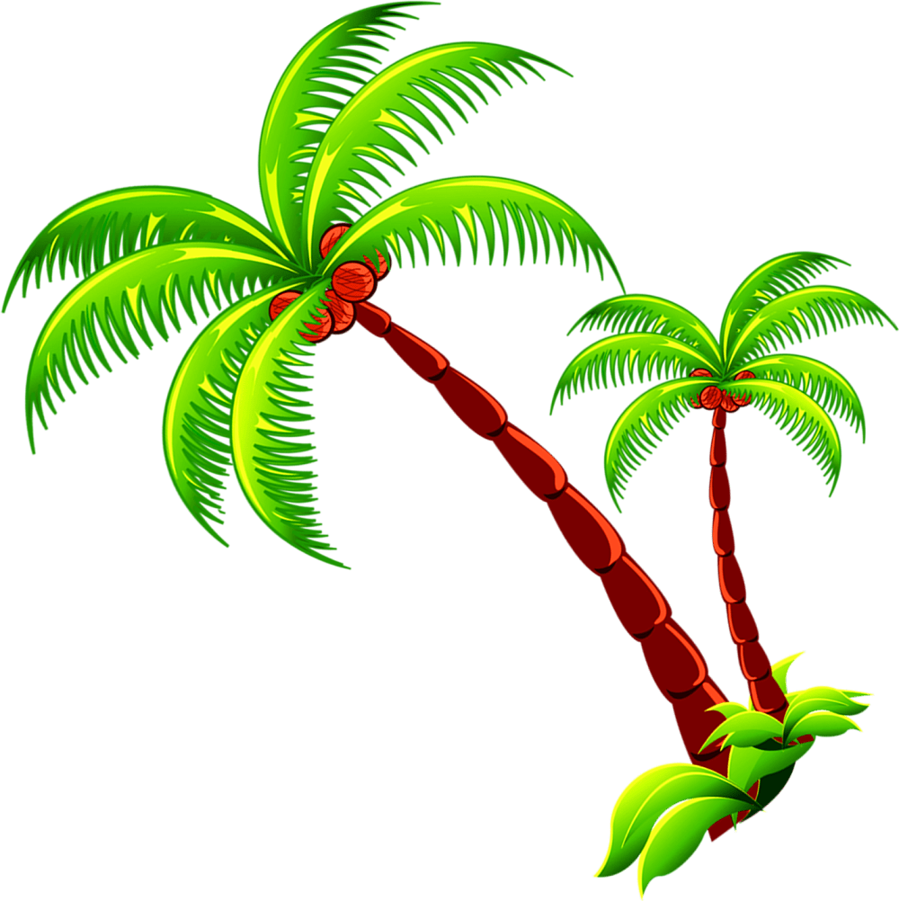 medium resolution of coconut tree branch free photo png clipart