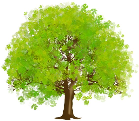 download large green tree