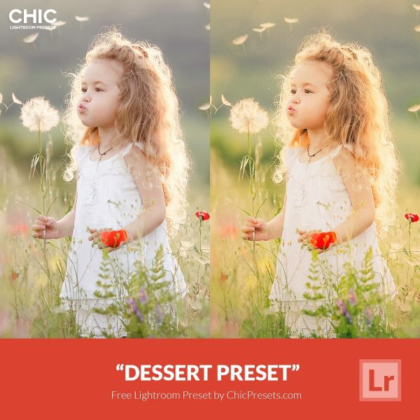 Preset Lightroom Dessert
