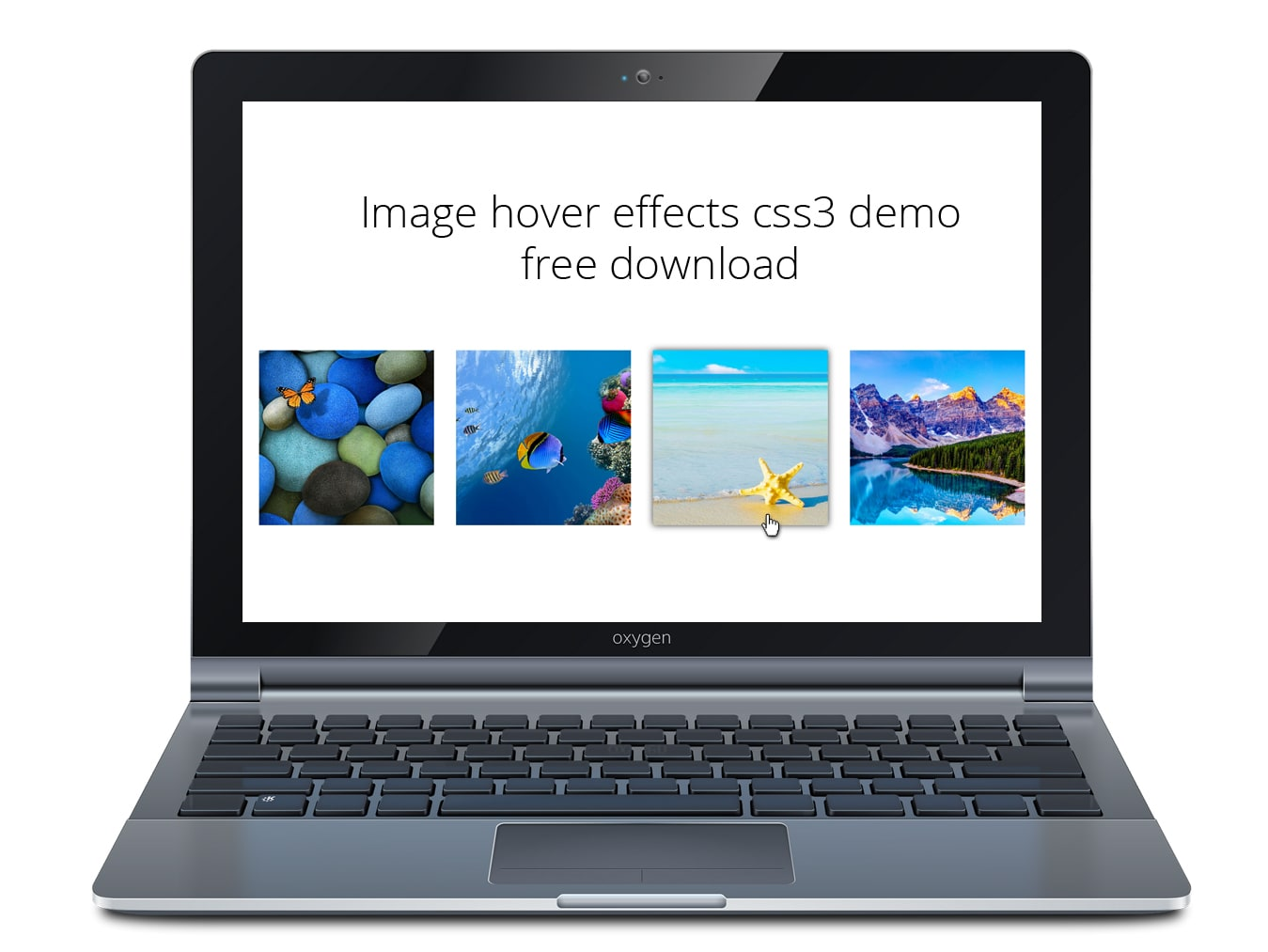 Image hover effects css3 demo free download