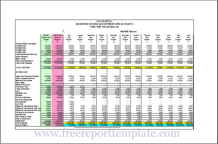 Comparative Budget Report Template – Free Report Templates