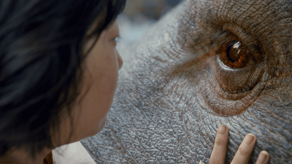 "A close up of a young girl, Mija, has her hand placed on her ""super pig"", Okja's, face and it looking at Okja's big, brown eye. Okja has gray, leathery skin, like an elephant."