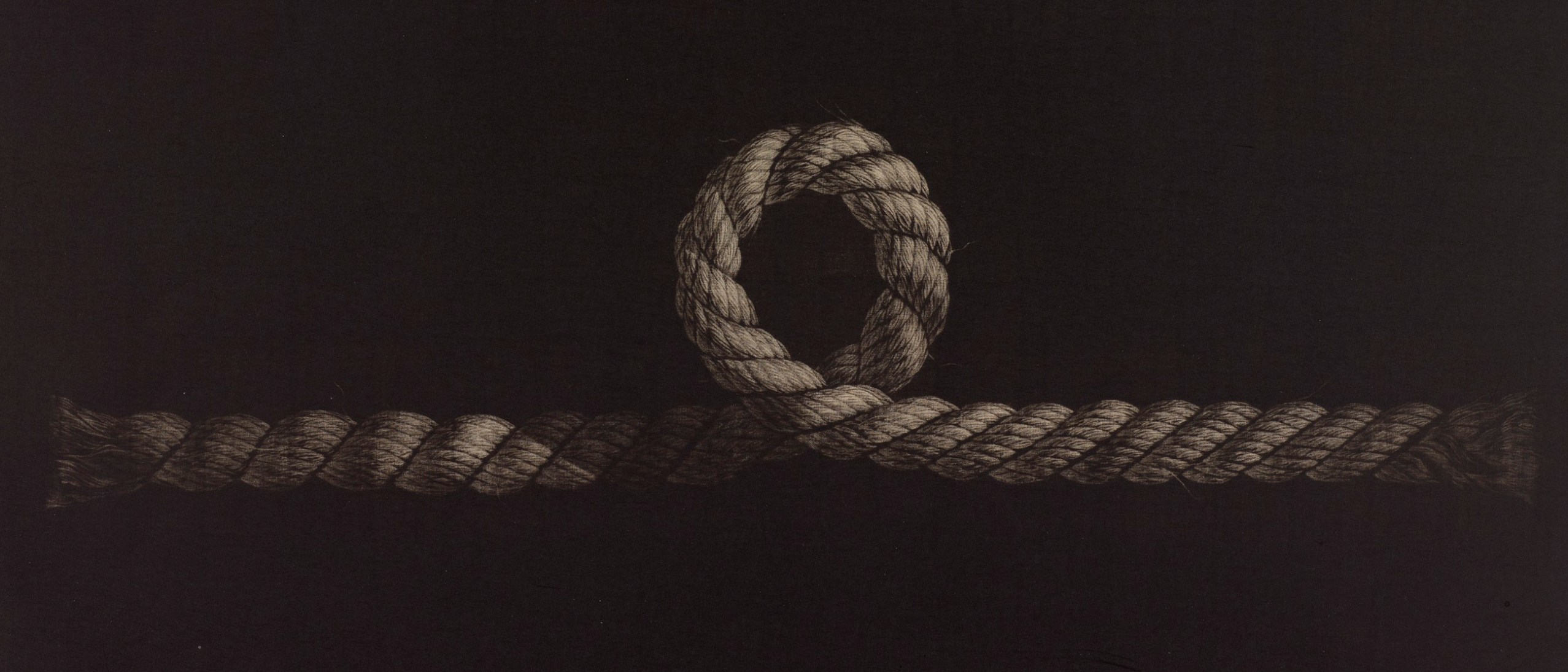 Detail image, Connection—Variation No. 4; Hamanishi Katsunori (b. 1949); Japan, 1980; Mezzotint; LTS2012.1.39