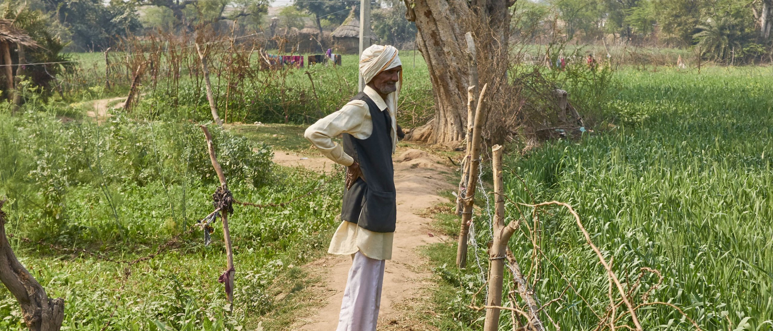 indian man standing on a path in a rich green field