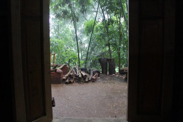 Watching the rain, Ngawonggo