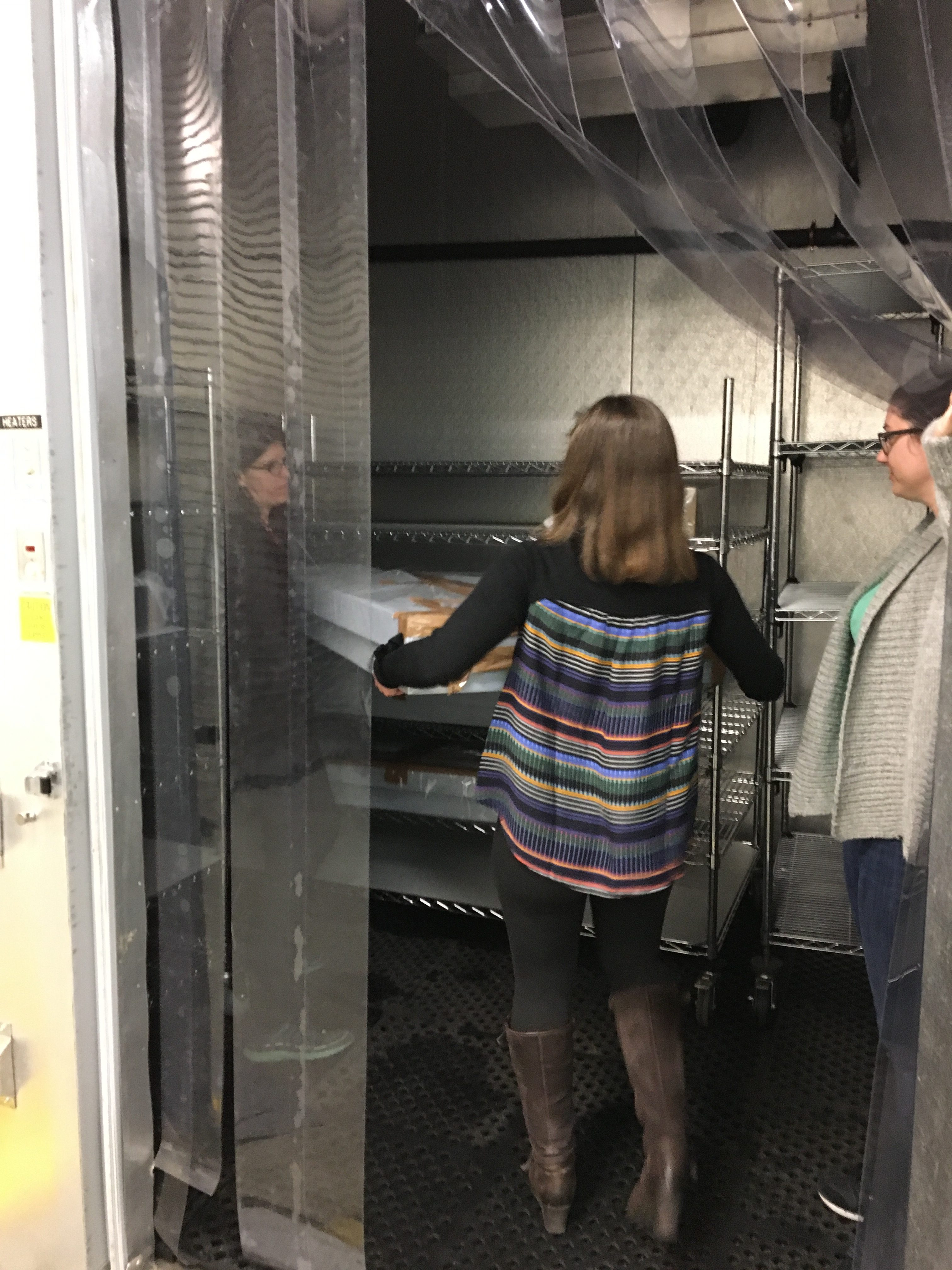 three staff members pulling wrapped boxes from freezer storage shelving