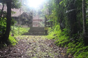 Overgrown temple complex behind gate