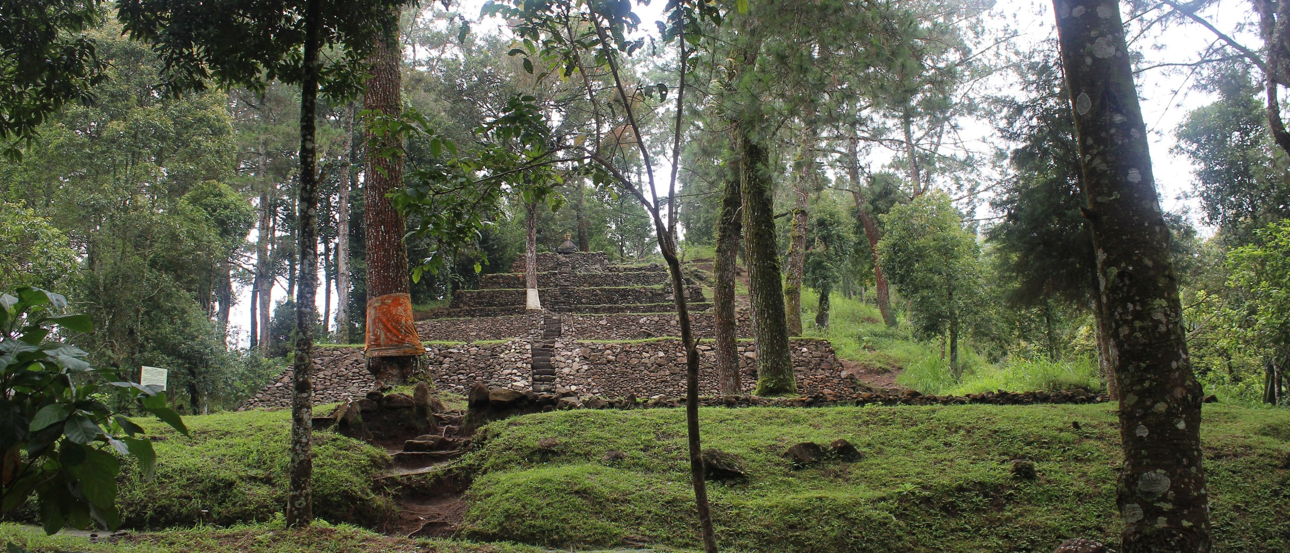 Terraced temple built into lush green mountainside, a slender tree with orange cloth around it in the foreground