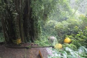 Yellow umbrellas over a platform shrine, set within dense jungle near a river