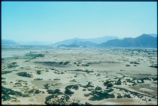 Southern Arabia in 1951