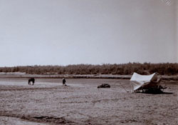 photograph of landscape with tent