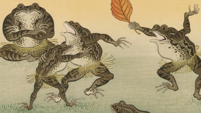 five toads dancing