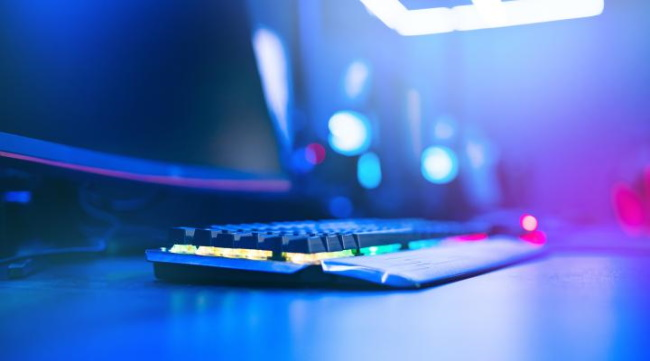Dutch gaming industry gaining momentum
