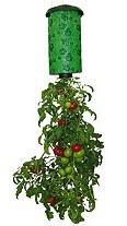 topsy-turvy-planter1