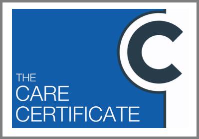 Free Care Certificate Workbooks