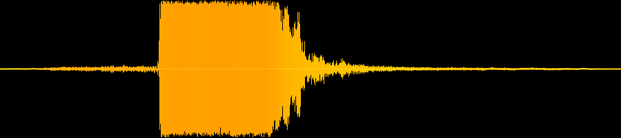 Sound Wave of a Squeaking Duck Toy Sound Recording