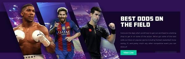 VulkanBet Sports Bonus