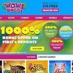 Wow Bingo Casino £15 free spins NDB   £3000 FREE in bonus money