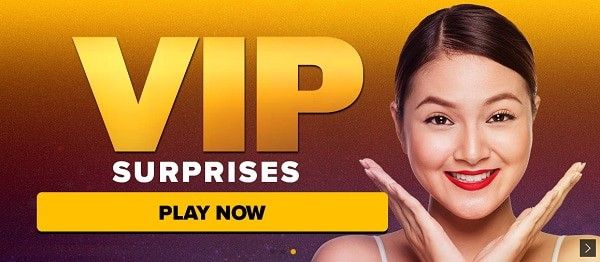 Next VIP Program