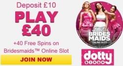 Dotty Bingo Casino free spins