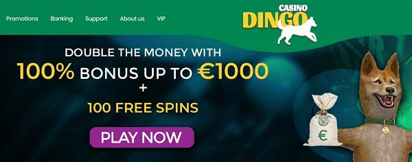 100% up to 1000 EUR and 100 free spins for new depositors