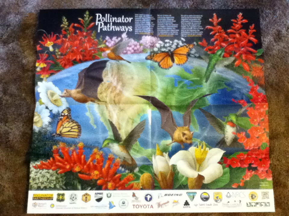pollinator pathways poster from nrcs distribution center