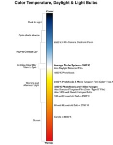 Color temperature chart also freestyle photographic supplies rh freestylephotoz