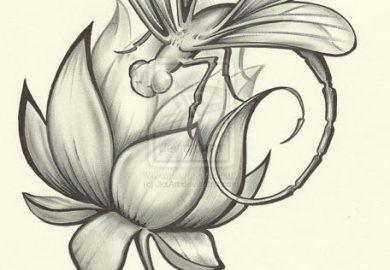 Dragonfly Tattoos Designs Free