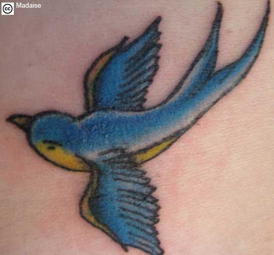 https://i0.wp.com/www.freetattoodesigns.org/images/tattoo-gallery/swallow-tattoo-b.jpg
