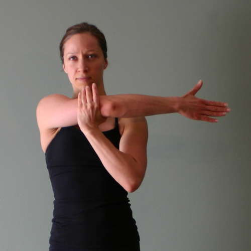 Shoulders Exercises Amp Workouts Freetrainers Com