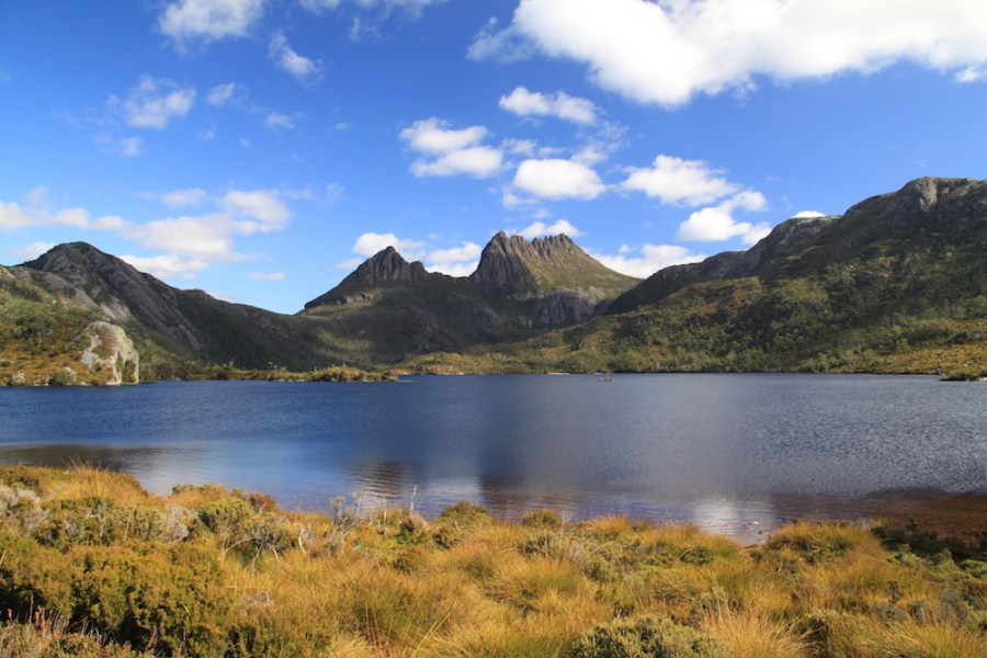 Lake Dove and the Cradle Mountain
