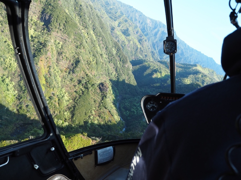 View from inside the helicopter
