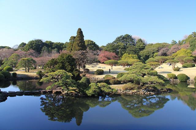 Beautiful gardens of Shinjuku Gyoen