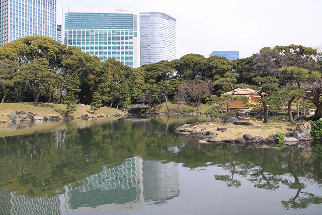 The beautiful Hama-Rikyu gardens