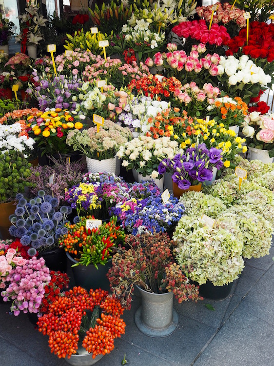 Flower stall in Petar Preradovic Square, also called Flower Square