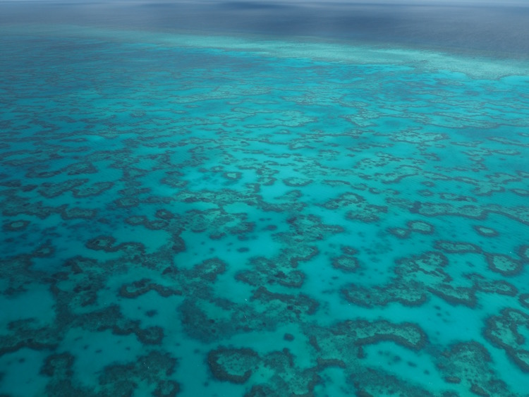 View over the reef from the seaplane.