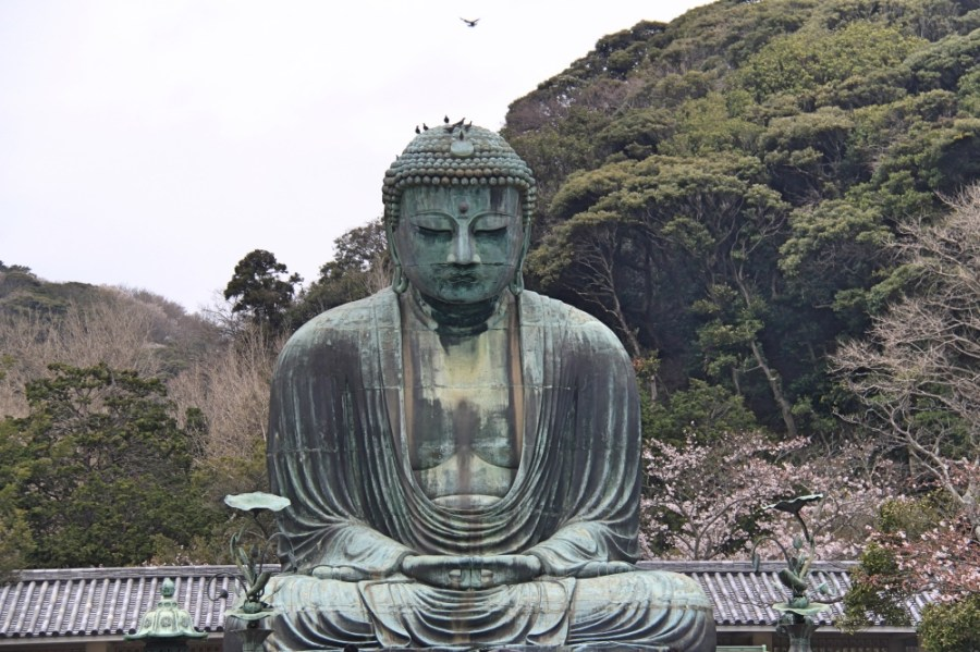 The big buddha.
