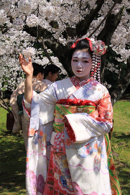 A wannabe geisha posing under the blossoms.