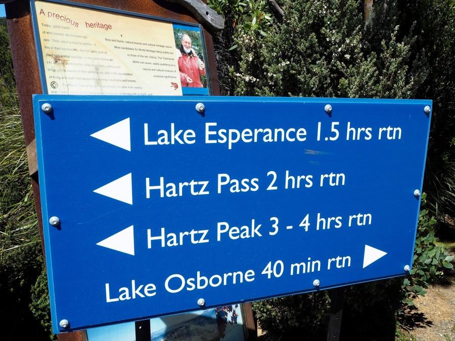 Many hikes, we chose Hartz Peak.