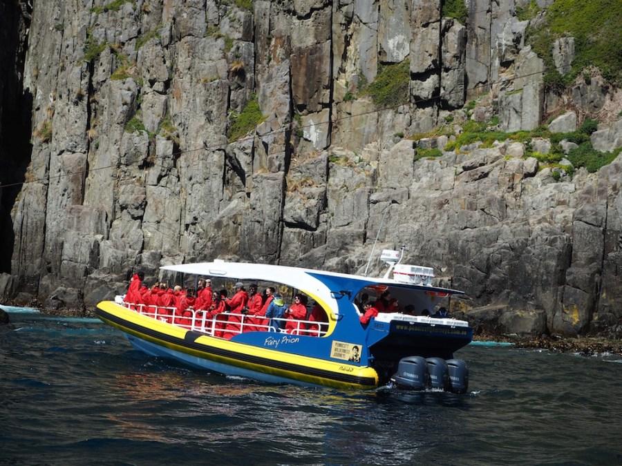 The Pennicott Wilderness Journey yellow boat.