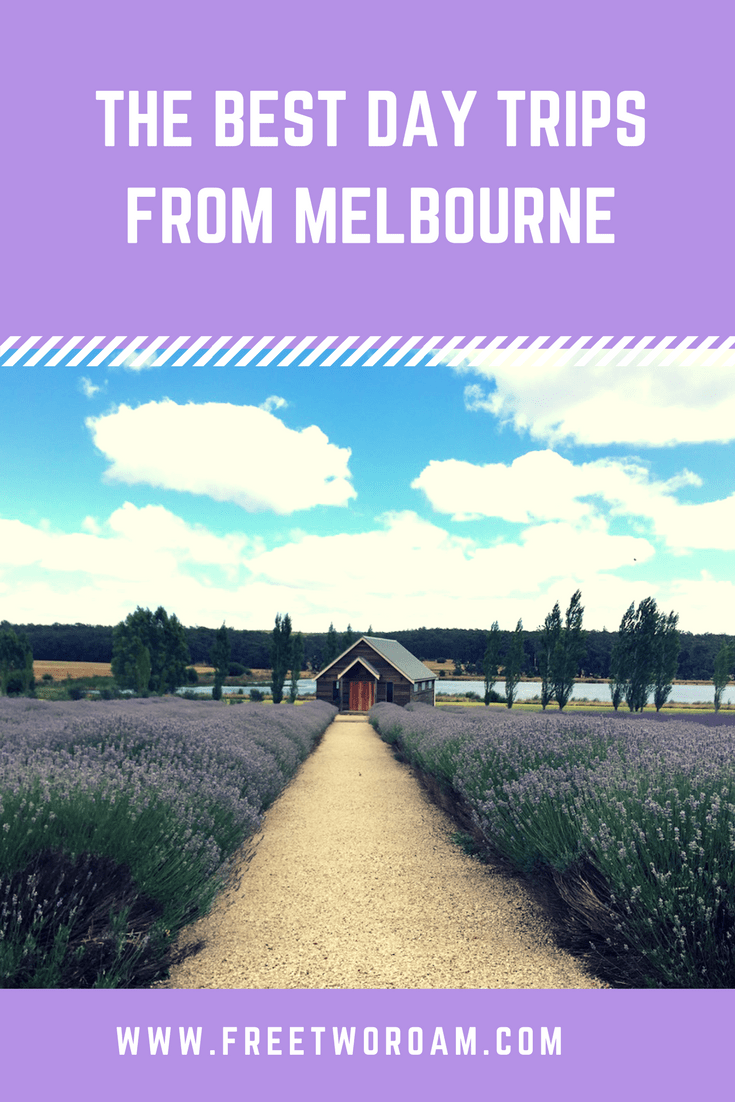 the best day trips from melbourne free two roam. Black Bedroom Furniture Sets. Home Design Ideas