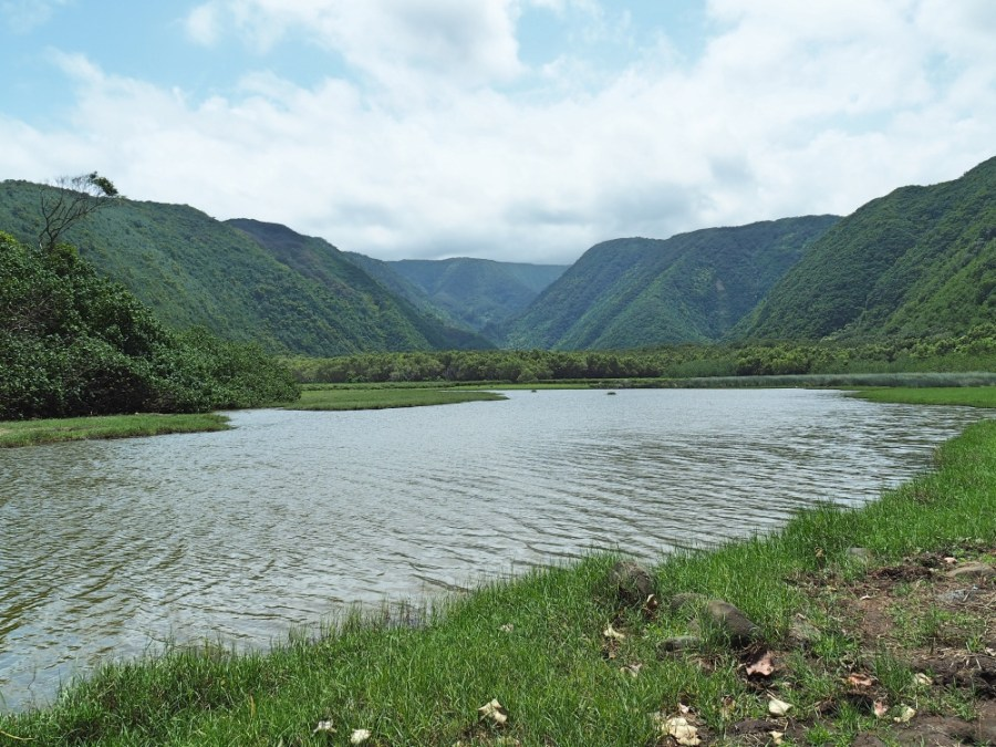 The Pololu Valley.