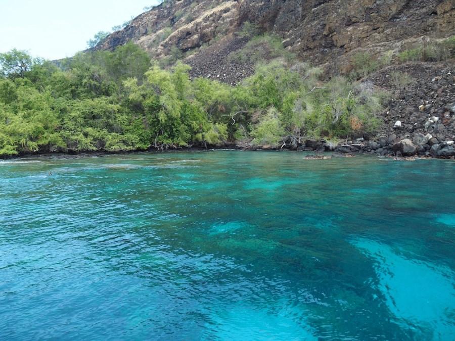 The Turquoise blue water of Kealakekua Bay.