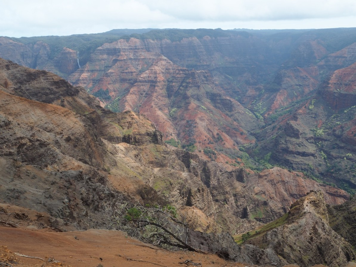 View from the Waimea Canyon Lookout.