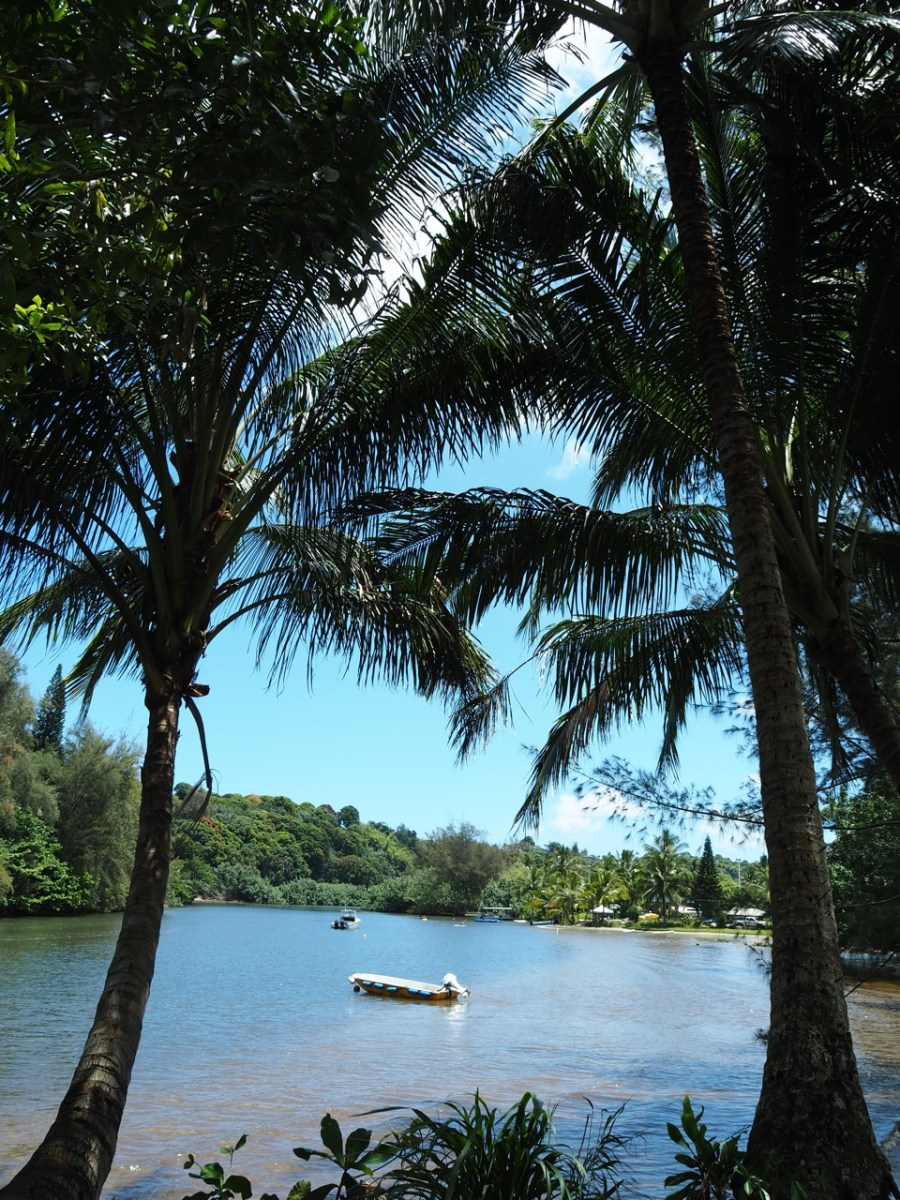 The Hanalei River.