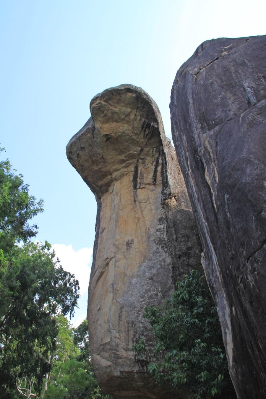 The Cobra Hood Cave
