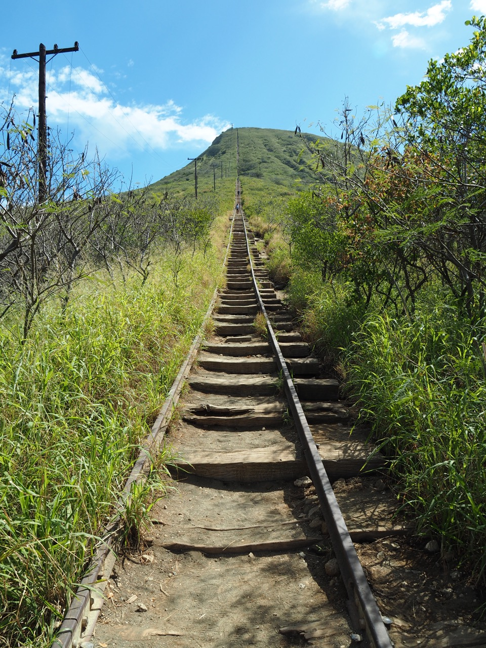 The many steps of the Koko Head Crater trail.