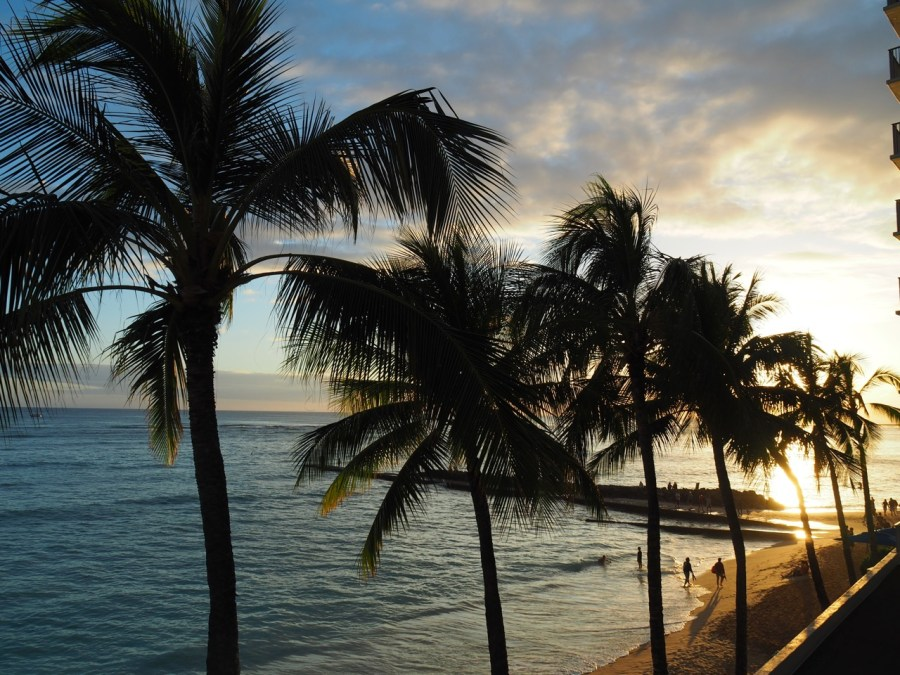 A Waikiki sunset.