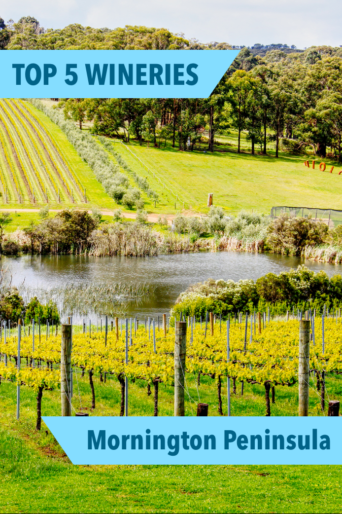 Our Top 5 Wineries on the Mornington Peninsula